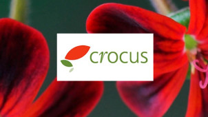 20% Off First Orders at Crocus