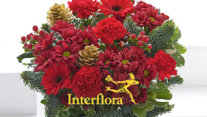 25% off Winter Brights Hand-tied Bouquet Plus Free Delivery at Interflora