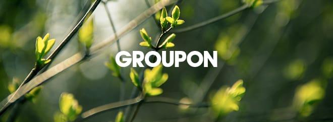 Groupon ireland 1