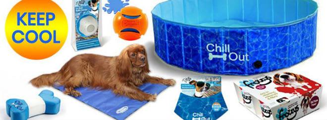 Jollyes pet supplies