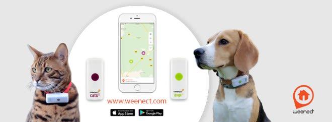 weenectFR