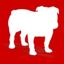 Bullguard - Logo