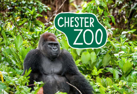 Active Chester Zoo Vouchers & Discount Codes for August 12222