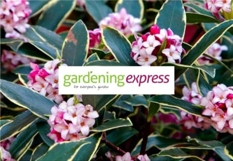 Get Up to 50% Off Items in the Sale at Gardening Express