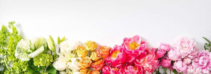 $65 or Less for Fresh Flowers 💐 at Interflora