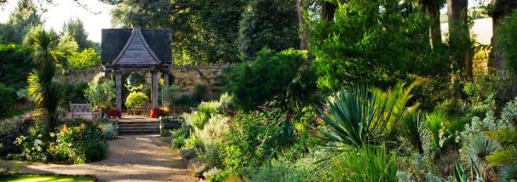 One Year Membership for £64 at Royal Horticultural Society (RHS)