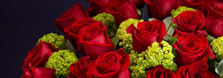 Don't Miss 10% Sitewide Discount at Serenata Flowers