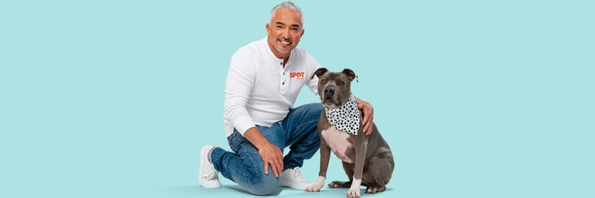 Spot Pet Insurance - Free e-gift