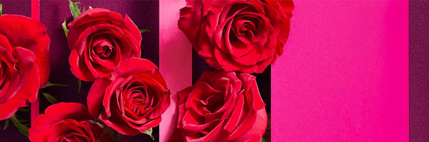 Order Selected Bouquets with Same Day Delivery at Florist by Waitrose & Partners